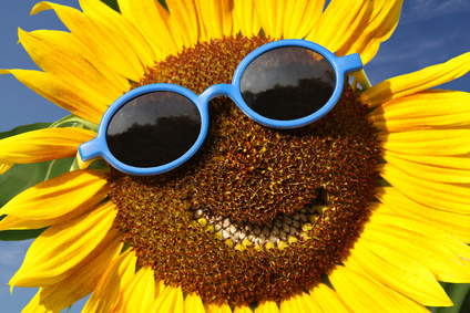 Sunflower with a smile