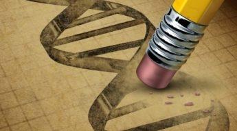 Le génie génétique et manipulation de l'ADN