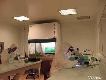 Laboratoire NS3