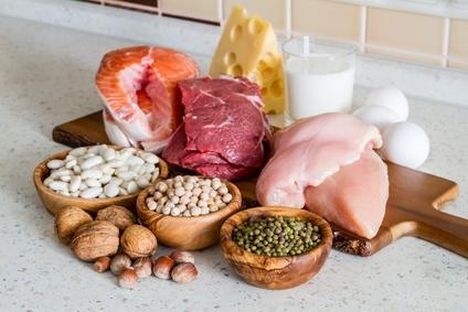 Proteines animales