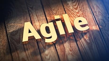 Agile, vous avez dit agile ?