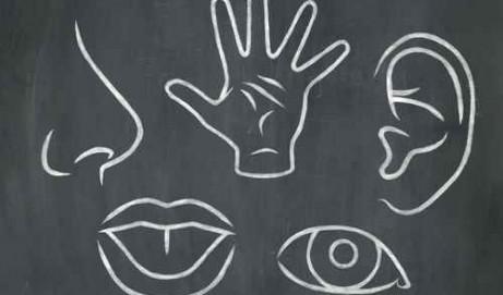 Le profil sensoriel : un outil précieux