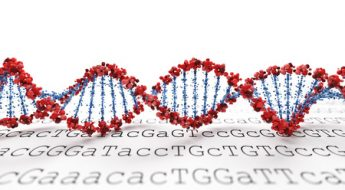 30323619 - dna background